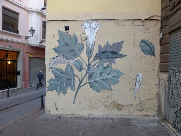 Escif-Les-Fleurs-du-Mal-Datura-Stramonium-Mural-in-Valencia-01