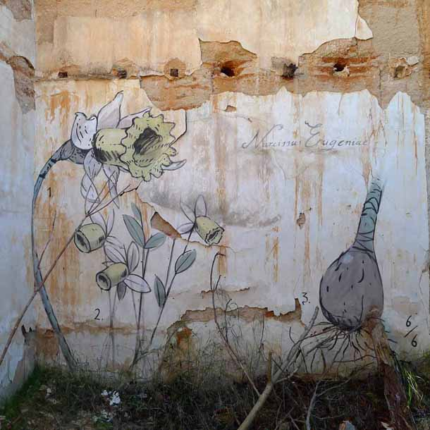 Escif-Les-Fleurs-du-Mal-Narcissus-Eugenise-Mural-in-Albacete-01