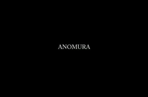 alessandro-zuek-simonetti-anomura-video--01