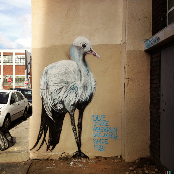 louis-masai-new-mural-in-cape-town-part1-01