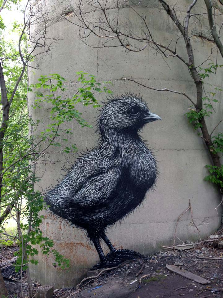 roa-new-mural-in-rochester-for-wall-therapy-06
