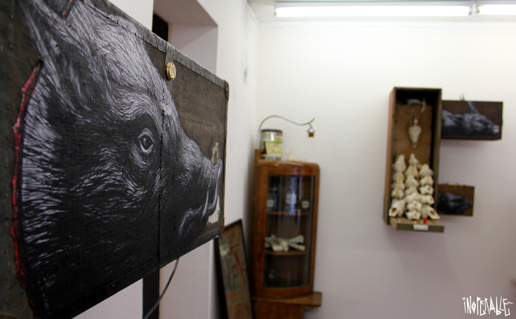 roa-pan-roas-box-exhibition-recap-06