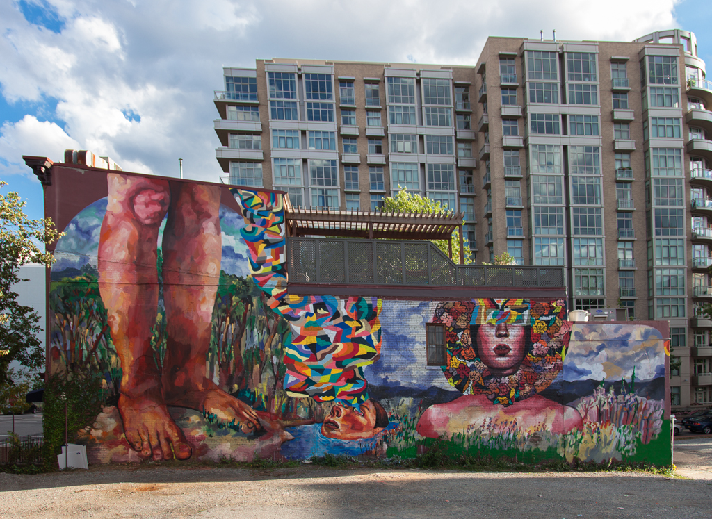 ever-new-mural-in-washington-usa-01
