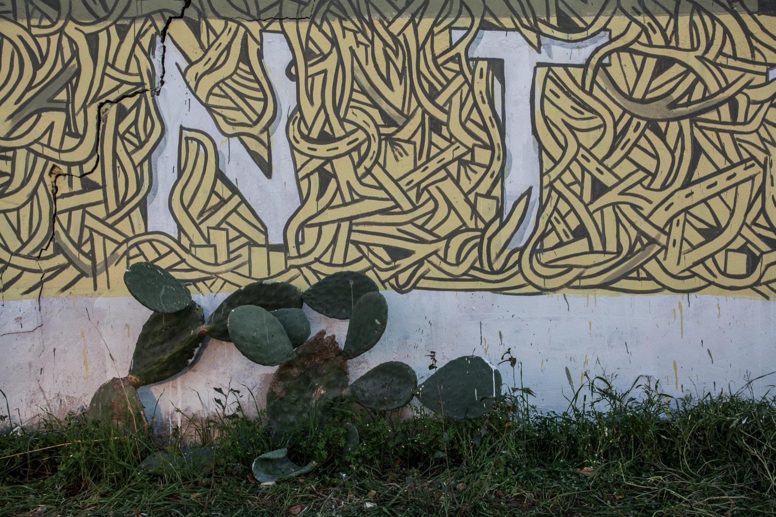 crisa-ciredz-tellas-new-mural-cagliari-17