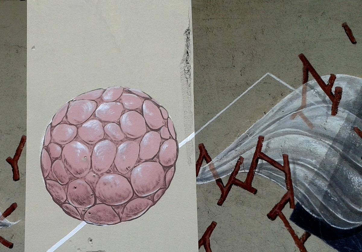 g-loois-new-mural-bologna-02