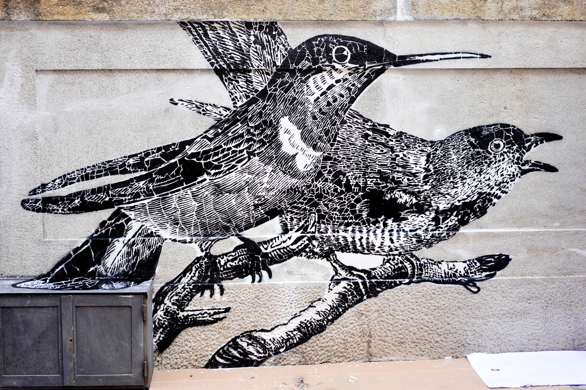 lucamaleonte-and-roa-new-mural-for-lecco-street-view-2013-10