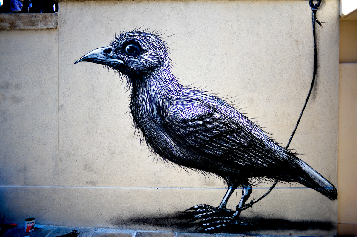 lucamaleonte-and-roa-new-mural-for-lecco-street-view-2013-15