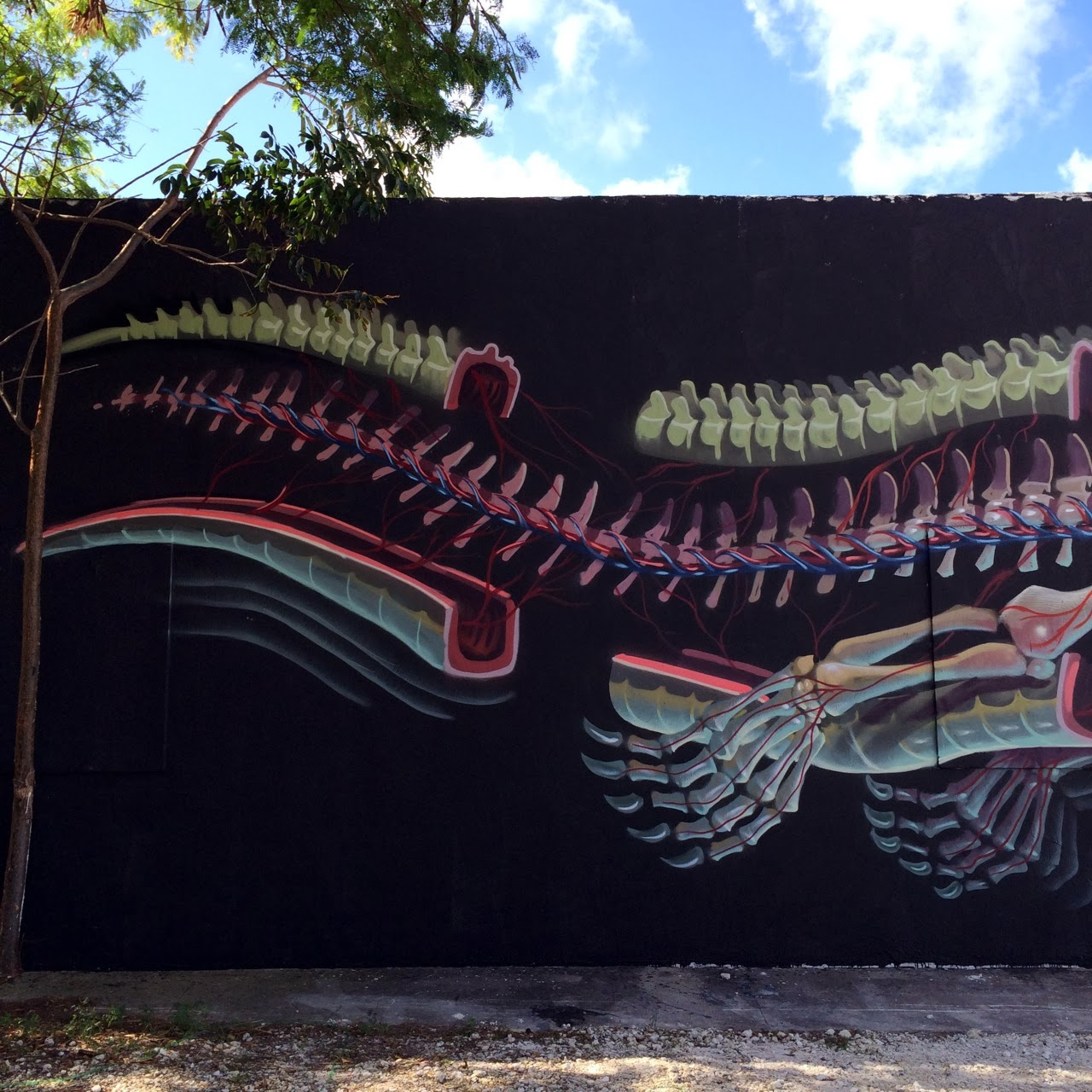 nychos-new-murals-for-art-basel-2013-06