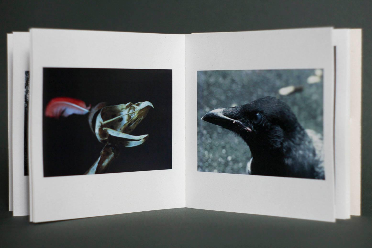 supra-natura-booklet-dvd-by-perpetua-edizioni-03