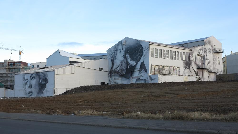 guido-van-helten-new-mural-in-reykjavik-iceland-08