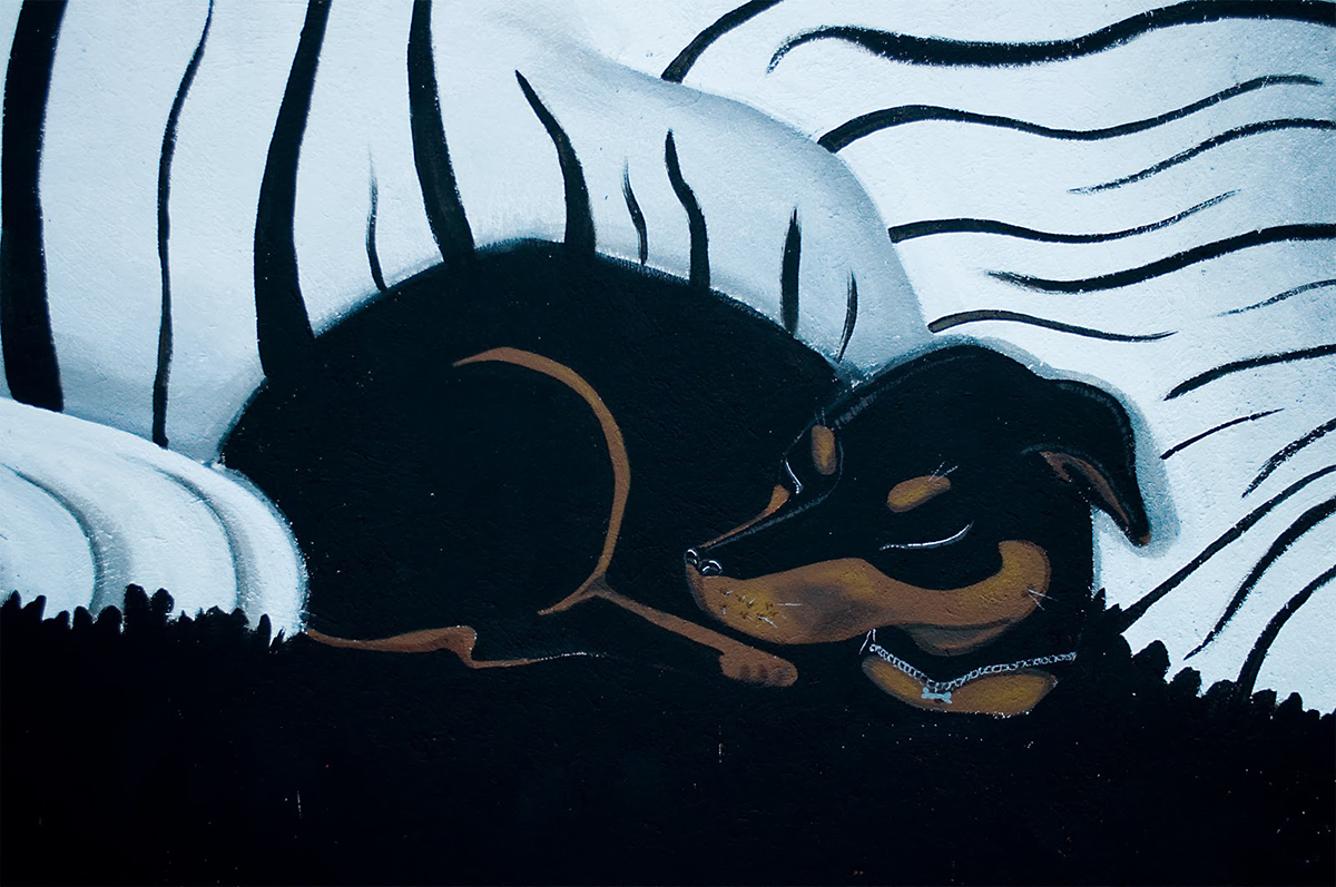 nana-new-mural-at-desordes-creativas-2013-04