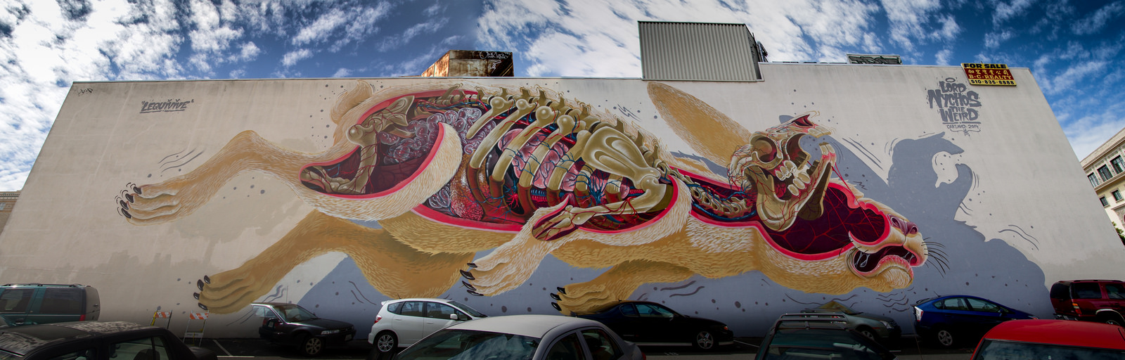 nychos-easter-rabbit-new-mural-in-san-francisco-00