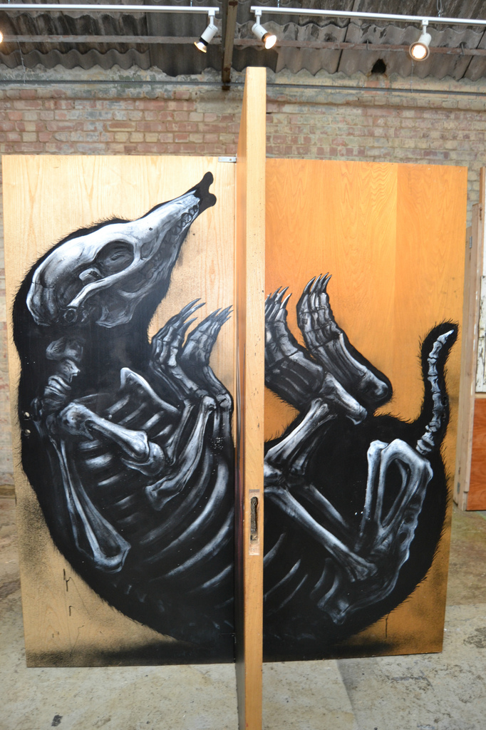 roa-at-stolenspace-gallery-recap-06