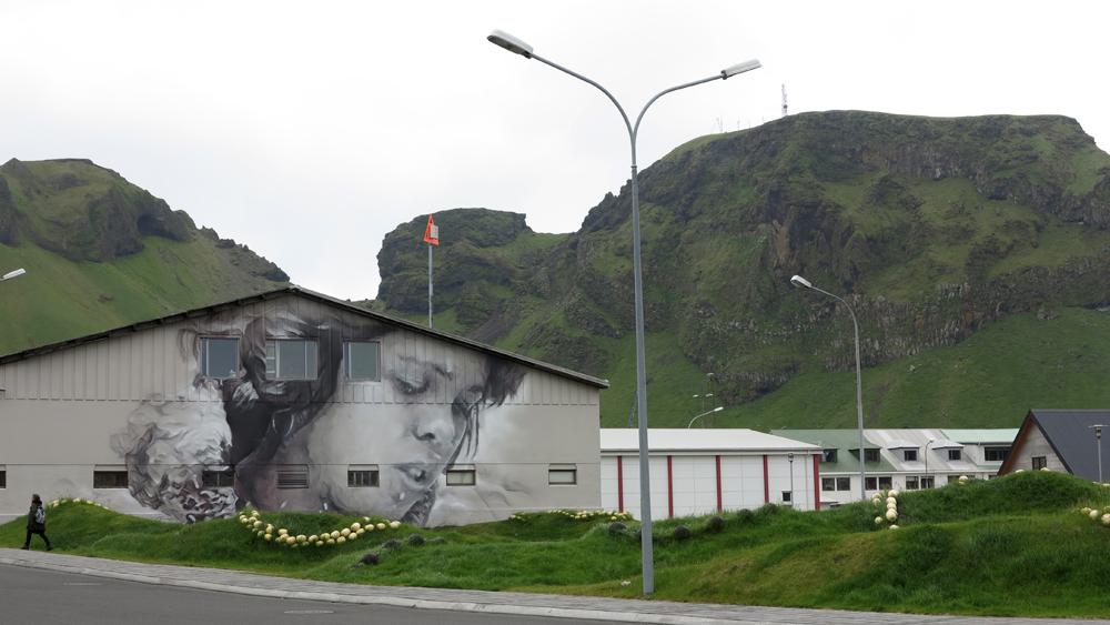 guido-van-helten-in-vestmannaeyjar-iceland-04