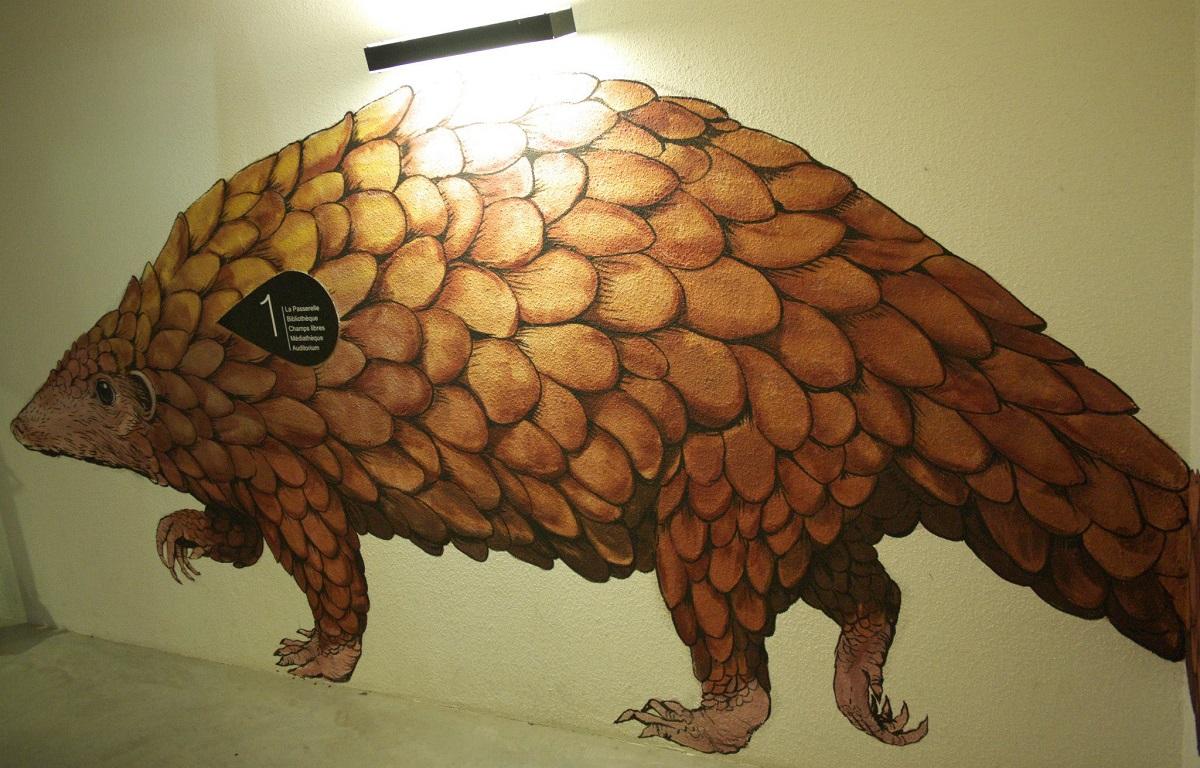 ericailcane-at-toulouse-museum-recap-05