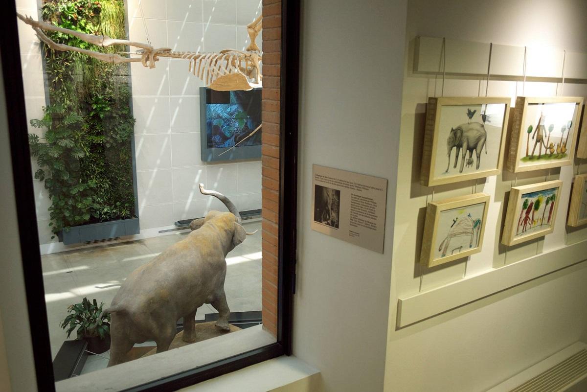 ericailcane-at-toulouse-museum-recap-08