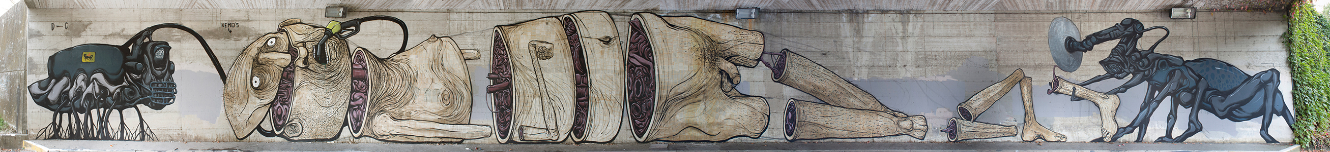 Nemo's-dissensocognitivo-natura-morta-mural-01
