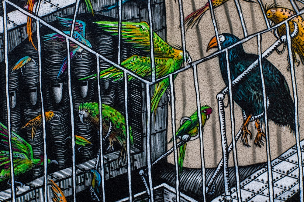 phlegm-the-songbird-pipe-organ-mural-in-dunedin-04
