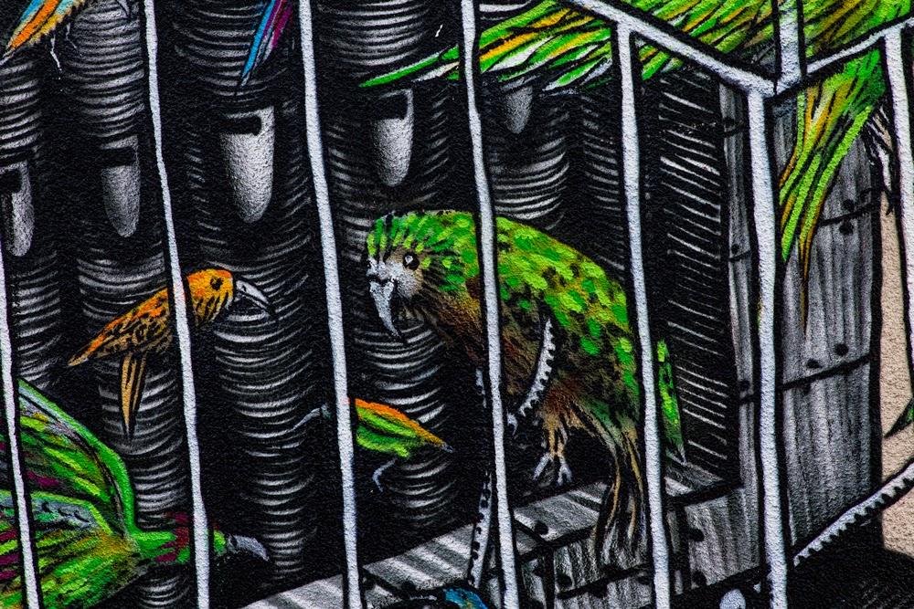 phlegm-the-songbird-pipe-organ-mural-in-dunedin-05