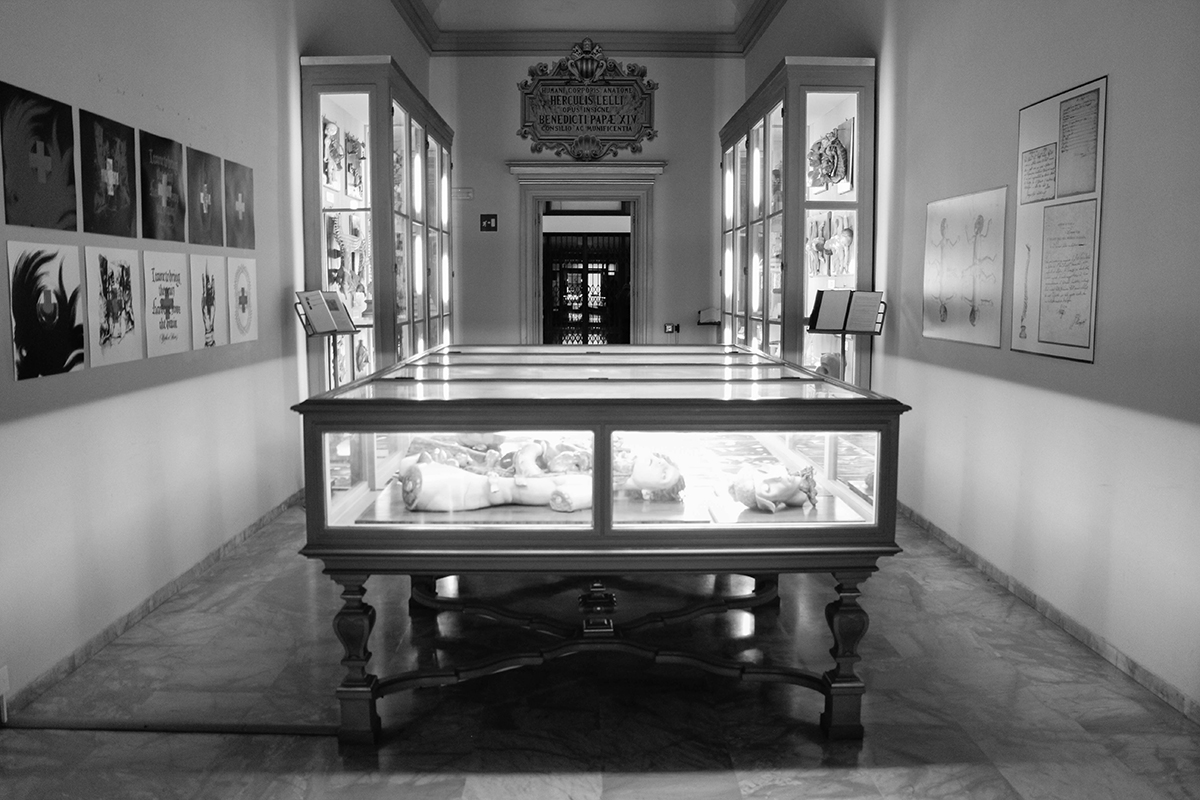 dolores-at-museo-delle-cere-anatomiche-recap-01