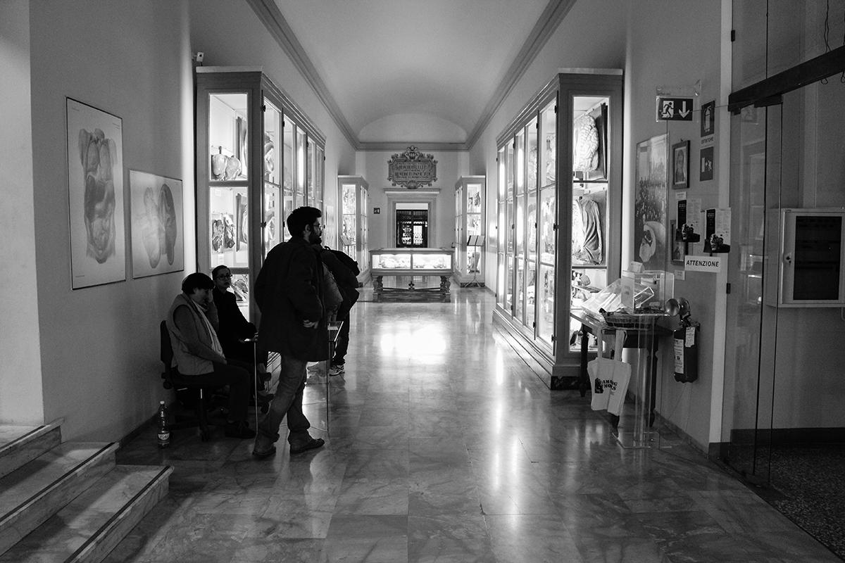 dolores-at-museo-delle-cere-anatomiche-recap-02