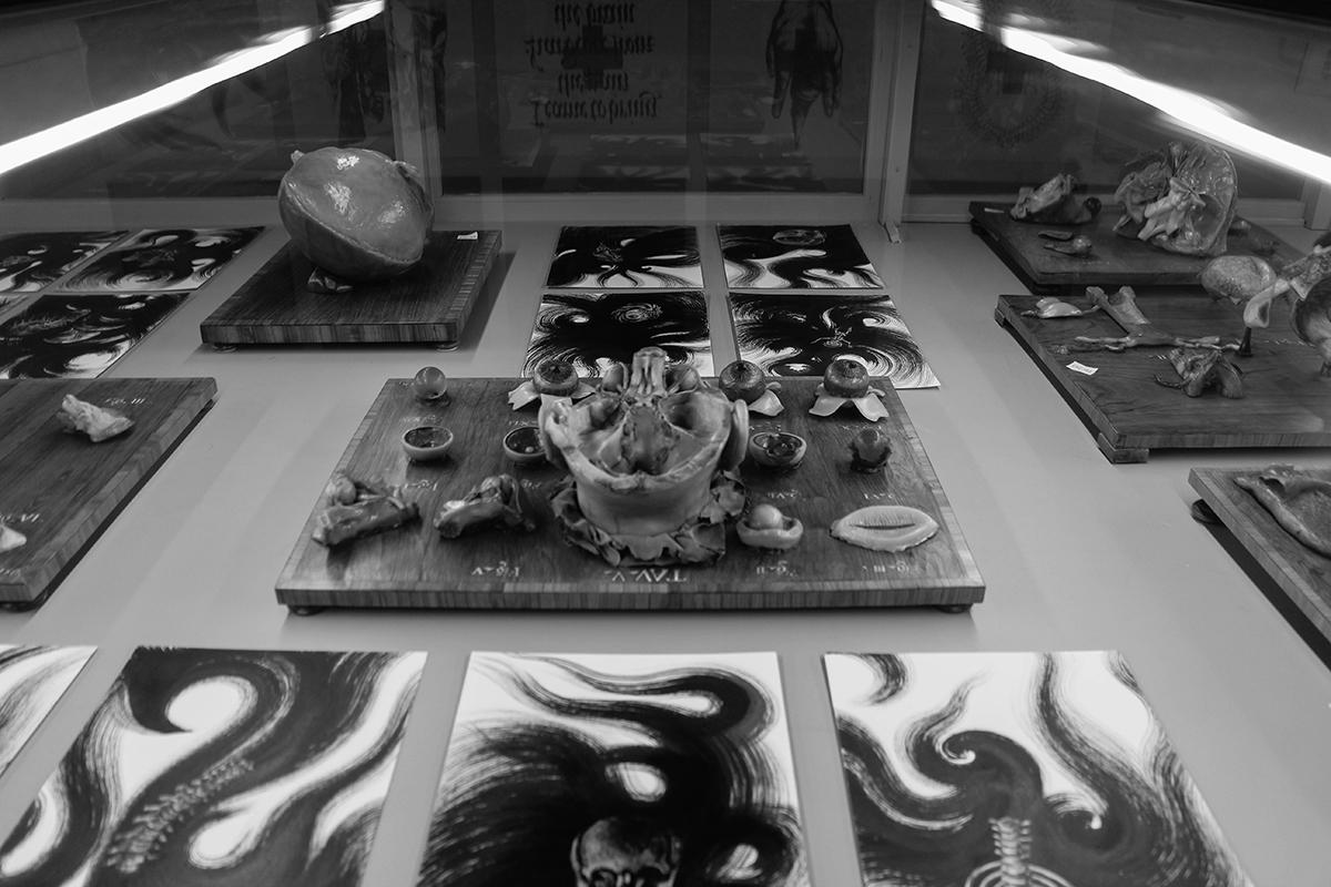dolores-at-museo-delle-cere-anatomiche-recap-03