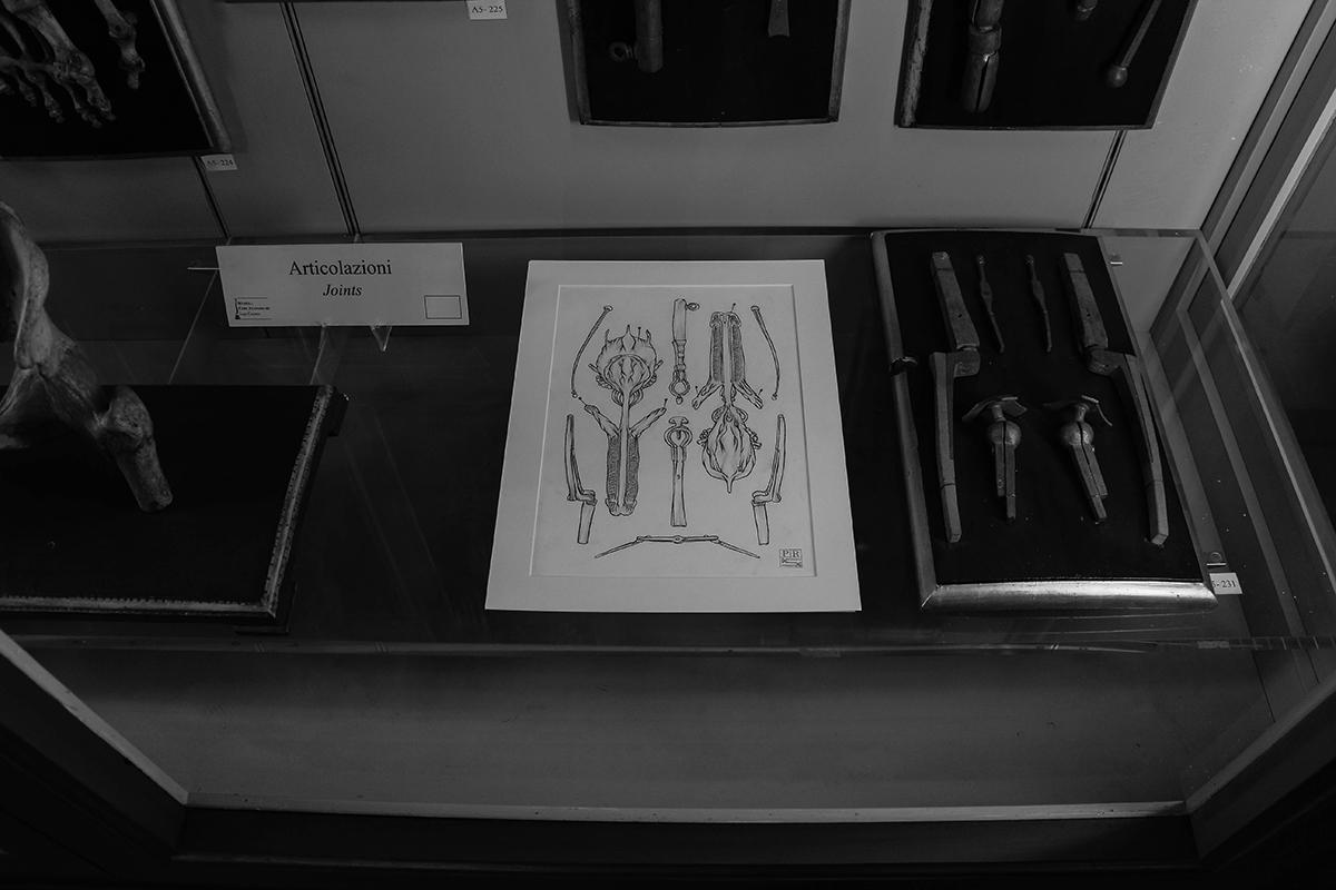 dolores-at-museo-delle-cere-anatomiche-recap-05