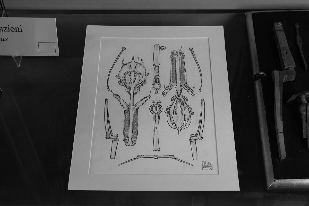 dolores-at-museo-delle-cere-anatomiche-recap-06