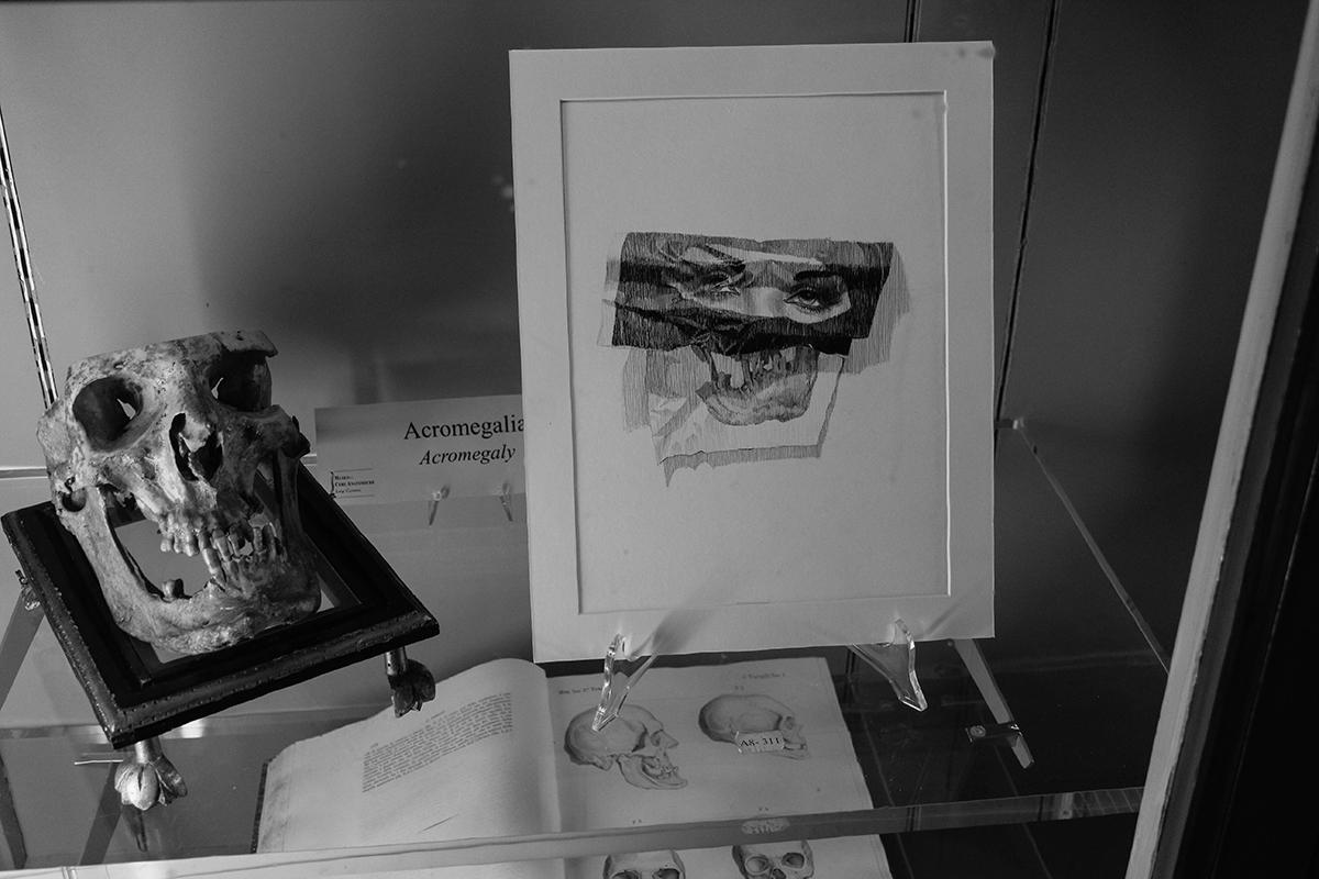dolores-at-museo-delle-cere-anatomiche-recap-18