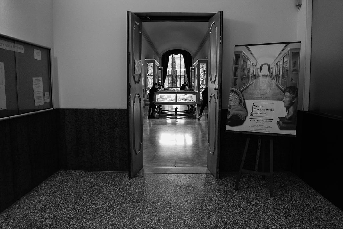 -at-museo-delle-cere-anatomiche-recap-31