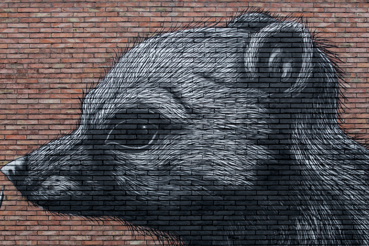 roa-new-mural-in-rome-05