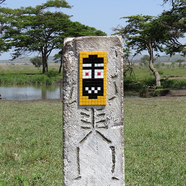 invader-new-pieces-in-serengeti-tanzania-04