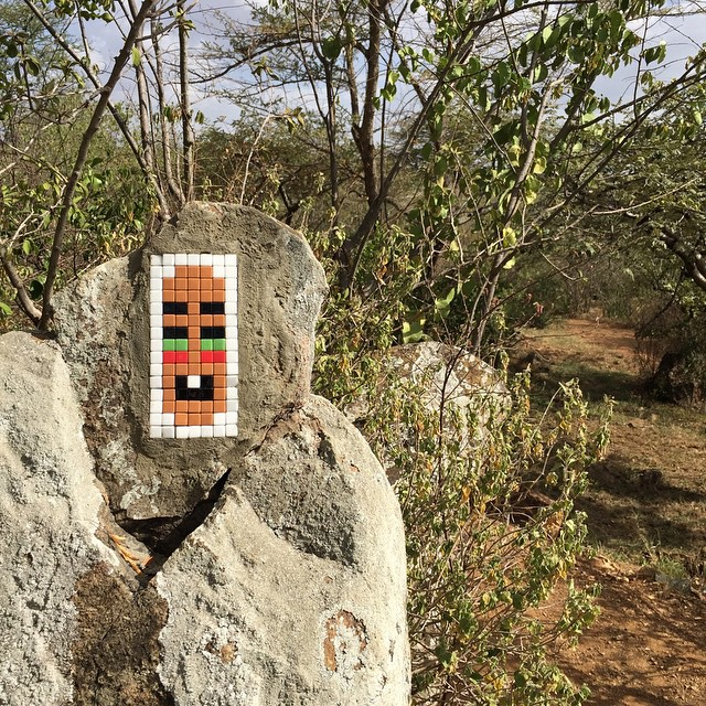 invader-new-pieces-in-serengeti-tanzania-06