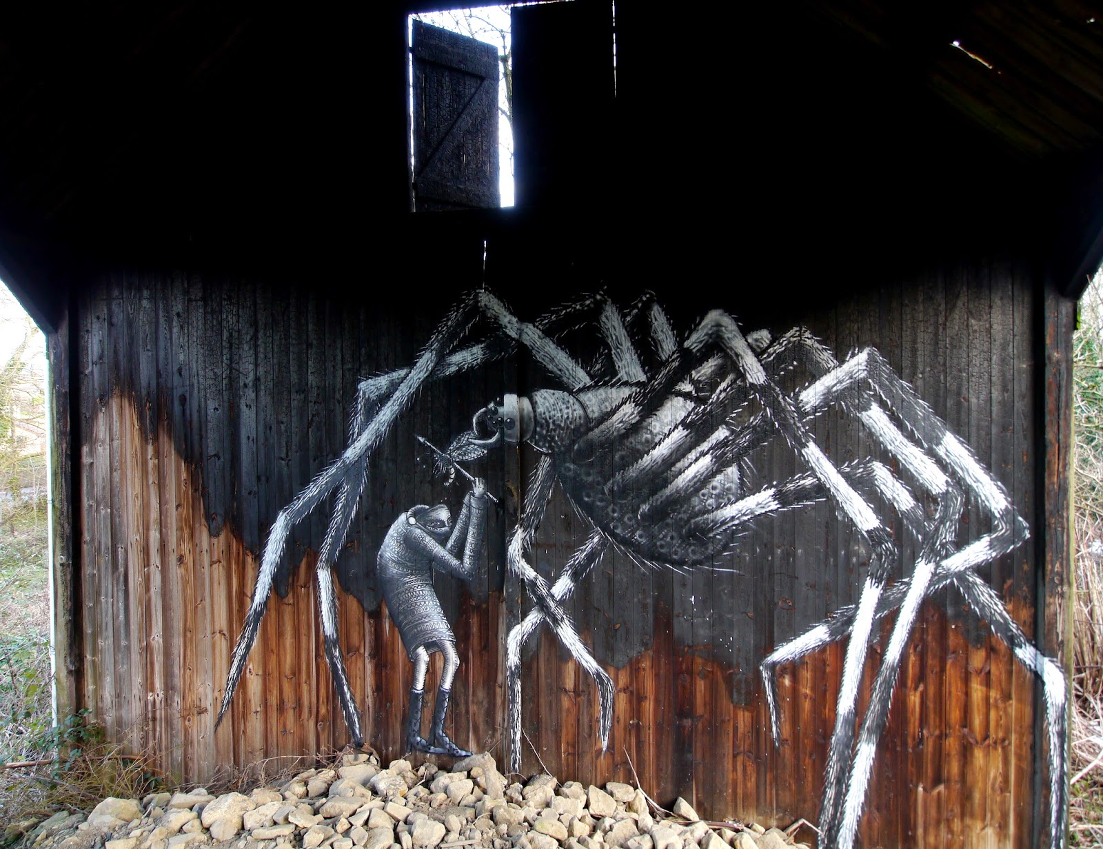 phlegm-the-spider-in-mosborough-sheffield-01