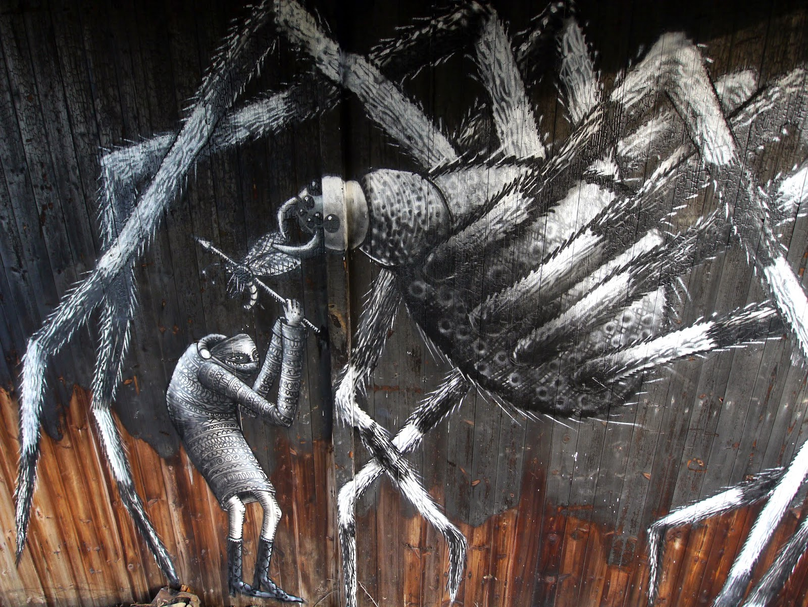 phlegm-the-spider-in-mosborough-sheffield-02