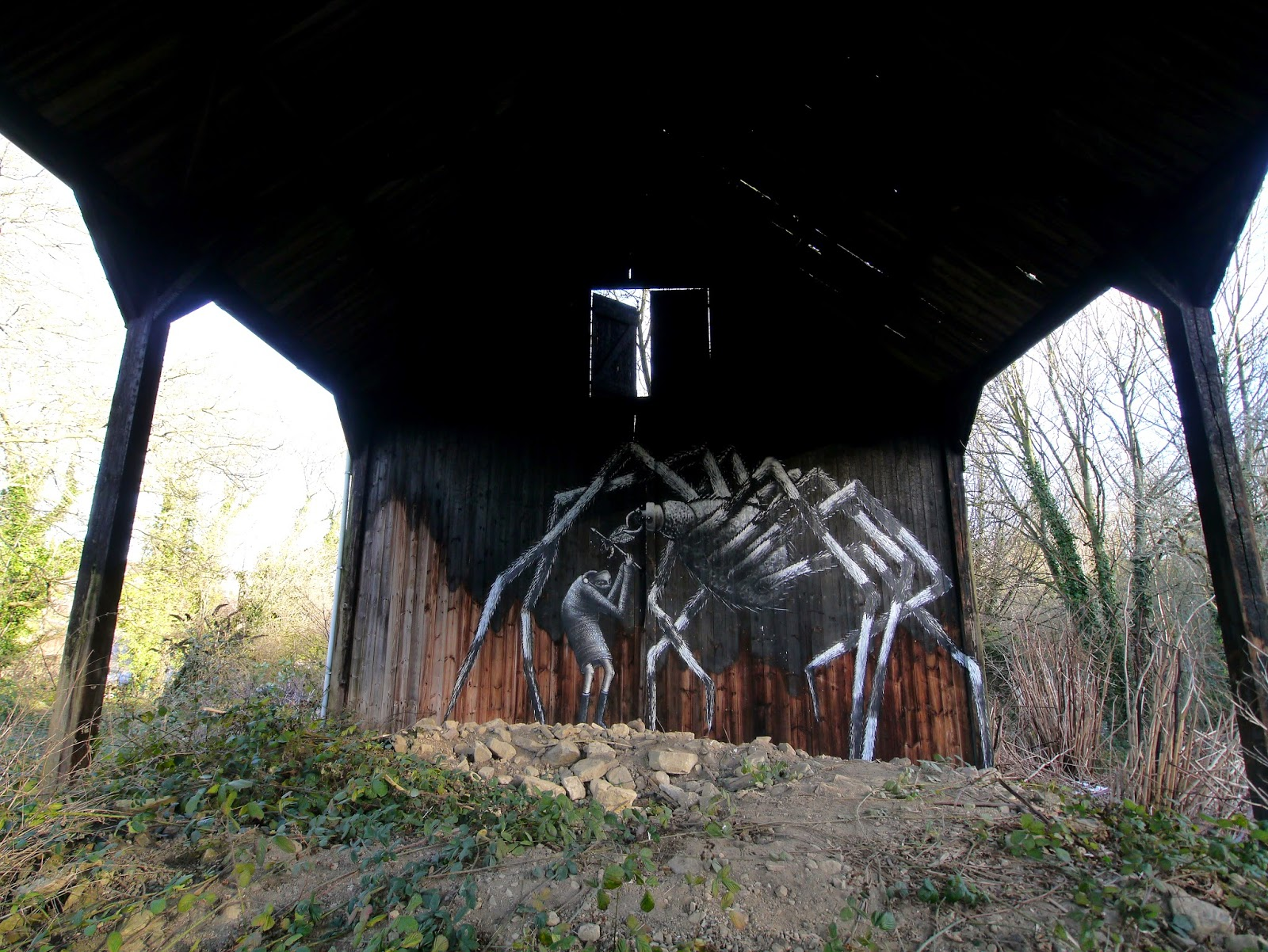 phlegm-the-spider-in-mosborough-sheffield-04