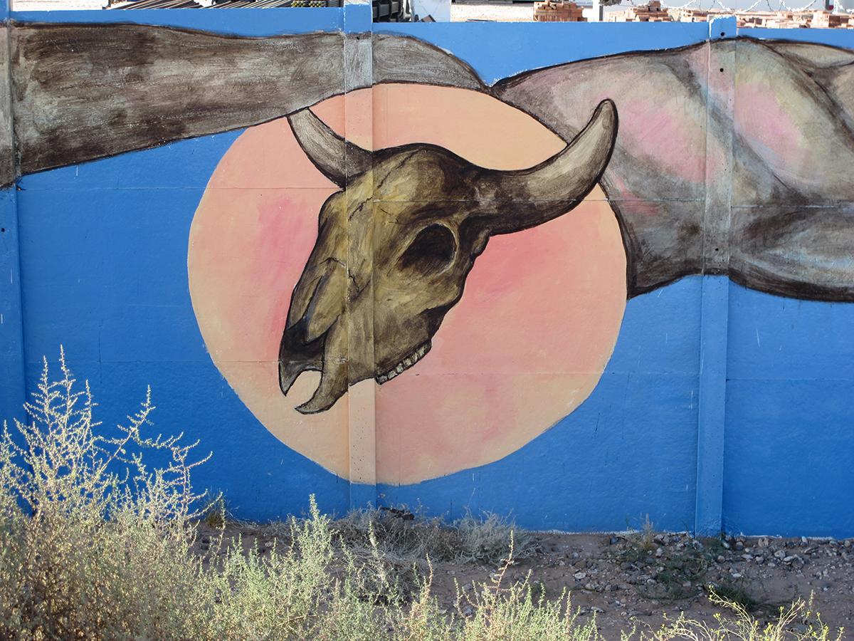 plumas-new-mural-in-neuquen-argentina-03