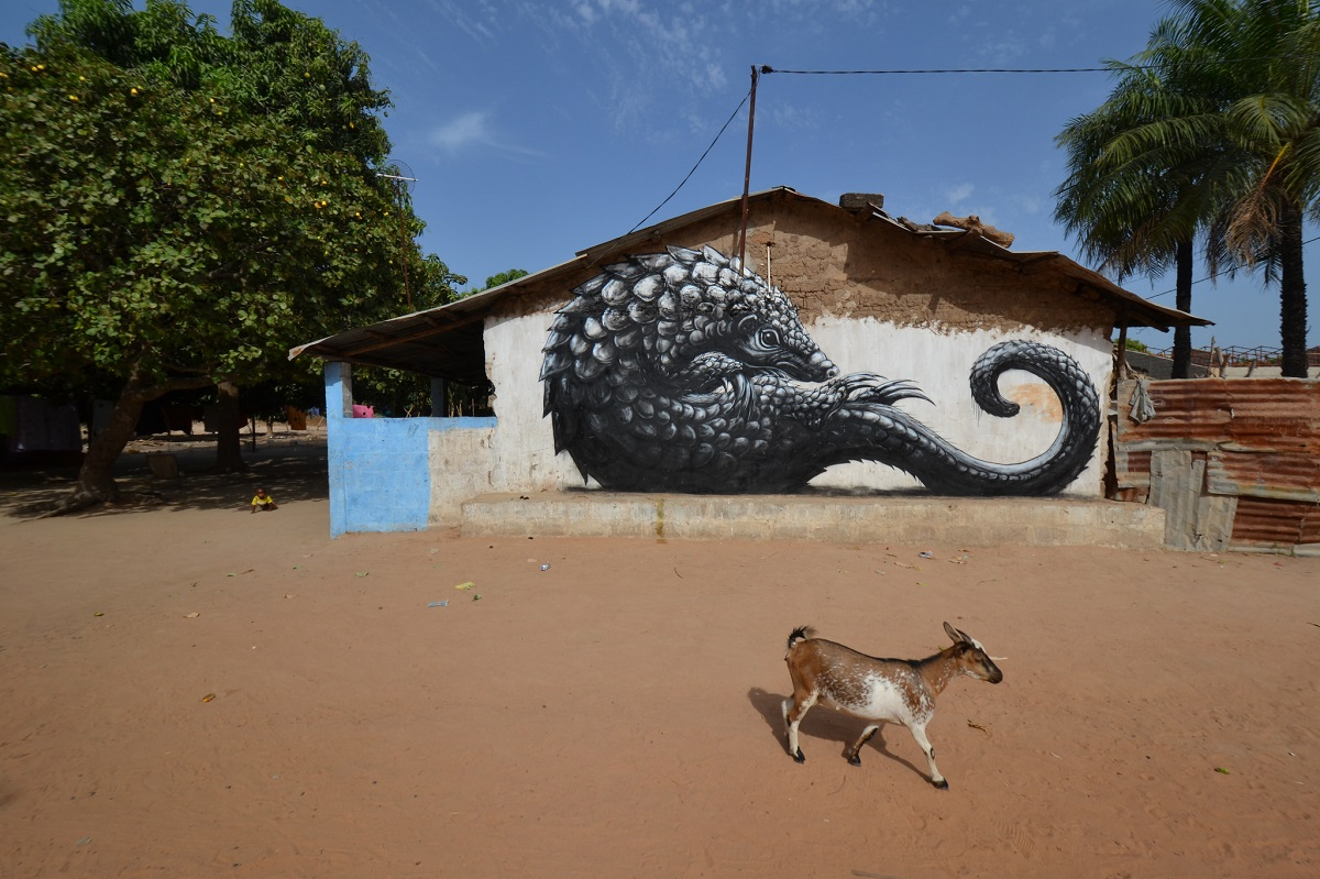 roa-new-murals-in-gambia-africa-03