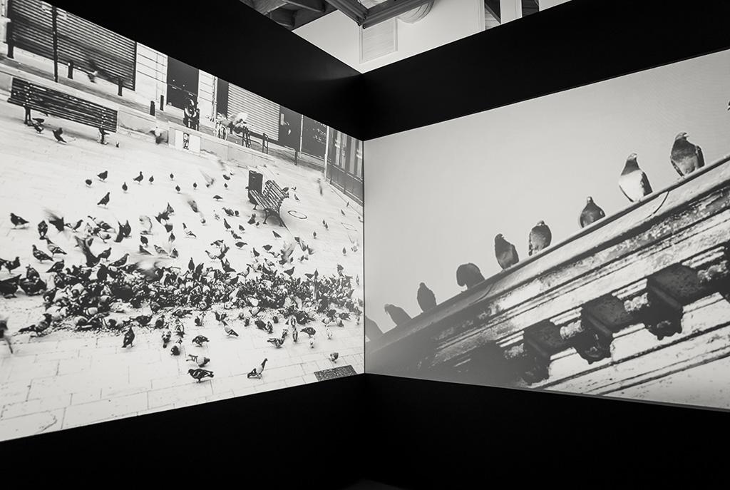 rero-at-fabien-castanier-gallery-recap-13