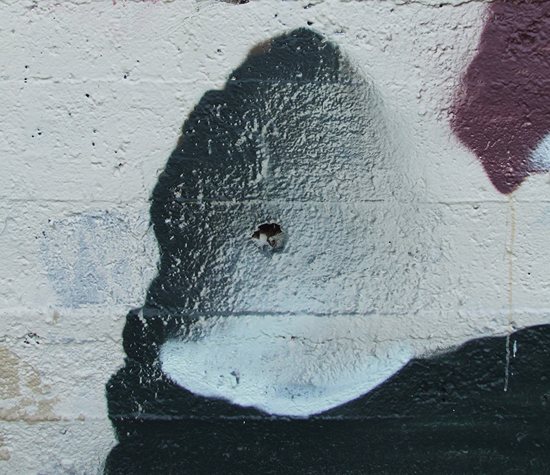 duncan-passmore-new-mural-in-wellington-04