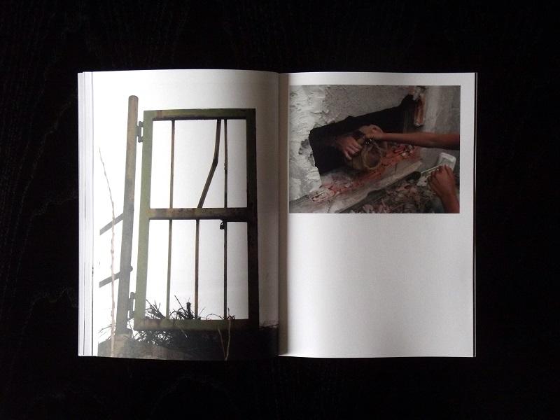 quivivo-new-fanzine-by-claudio-millecose (9)
