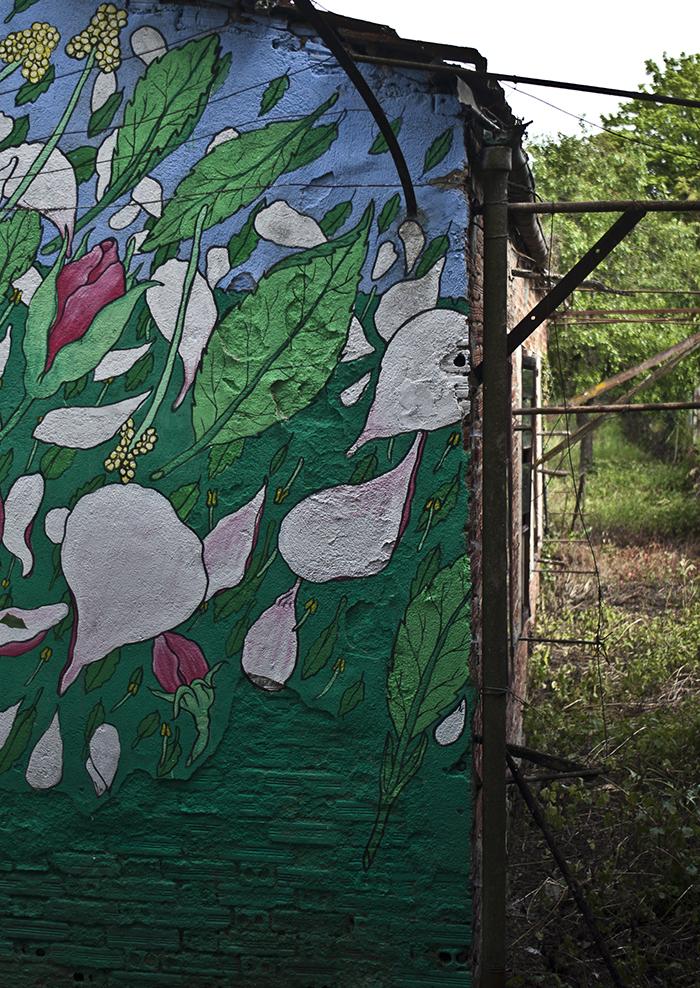 doa-new-mural-in-valle-de-lemos-03