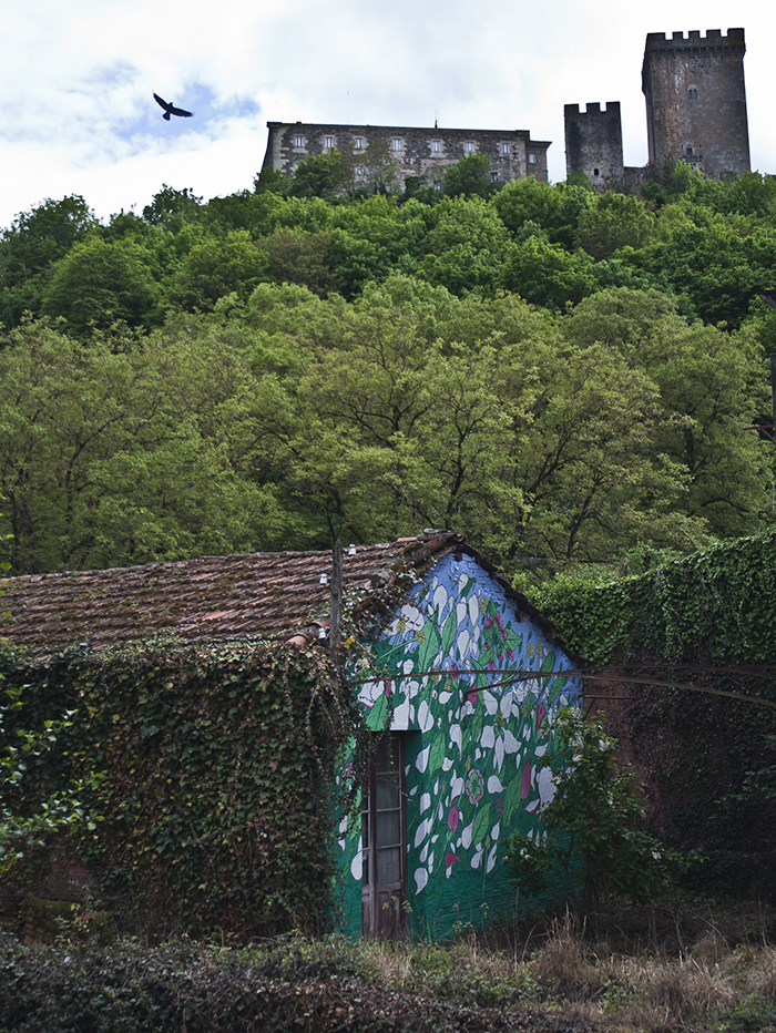 doa-new-mural-in-valle-de-lemos-05