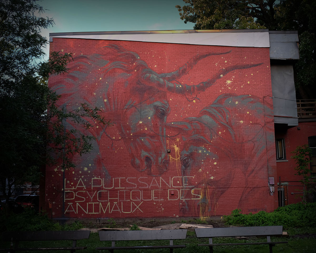faith47-new-piece-for-mural-festival-2015-01