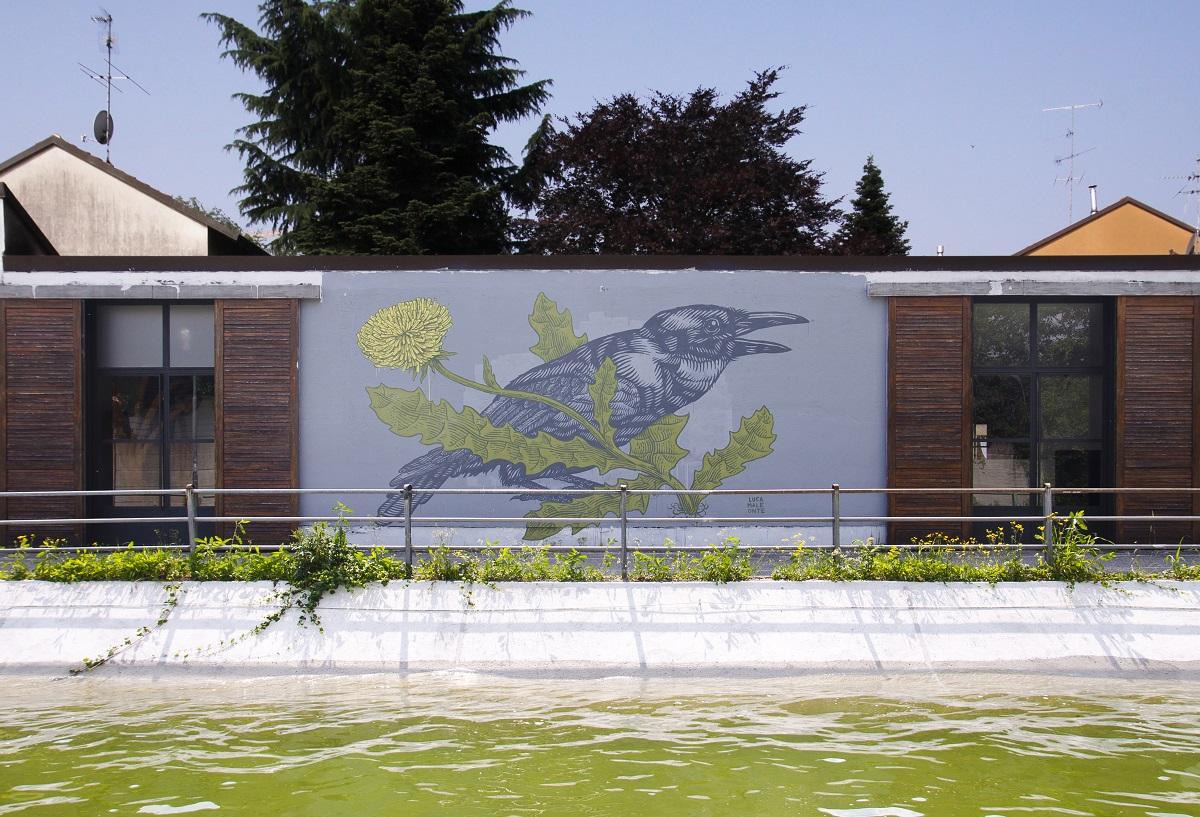 lucamaleonte-new-murals-in-monza-10