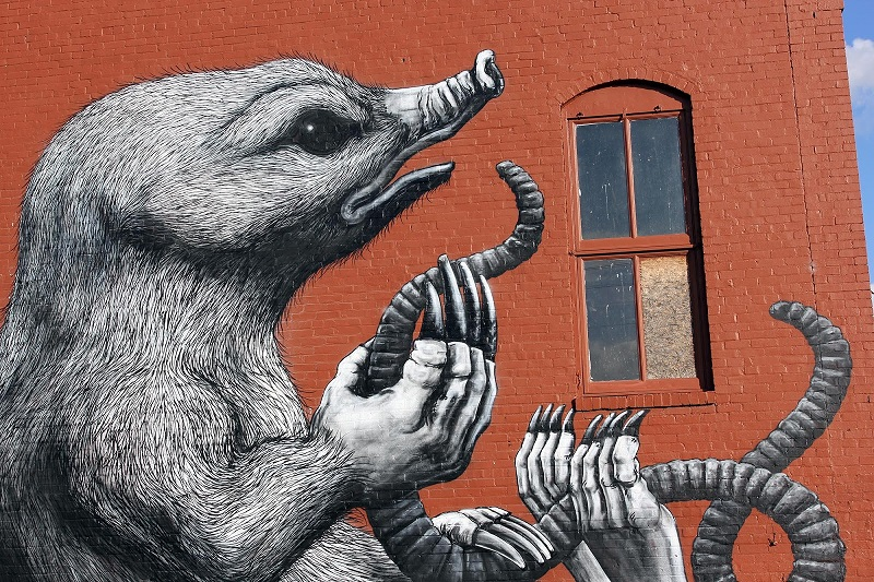 roa-for-the-unexpected-street-art-festival-03