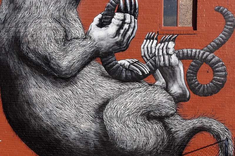 roa-for-the-unexpected-street-art-festival-04