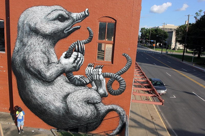 roa-for-the-unexpected-street-art-festival-05