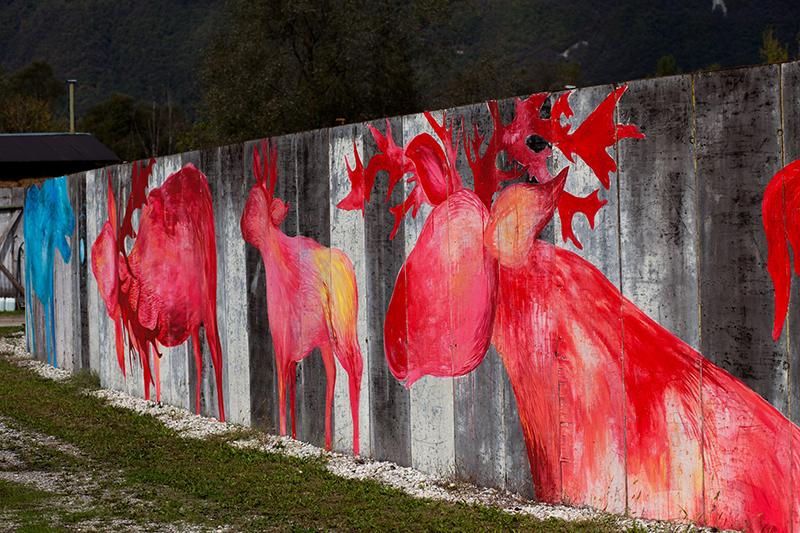 bastardilla-allegra-corbo-at-rio-cavalli-belluno-14