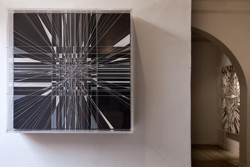 thomas-canto-at-wunderkammern-gallery-recap-09